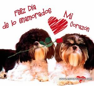 mejores imágenes para san valentin bonita tarjeta con peritos enamorados.