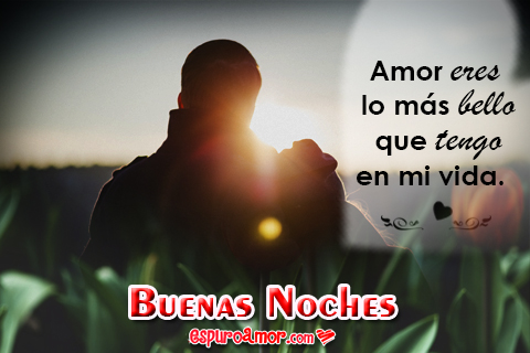 Buenas Noches Mi Amor Ositos Y Gifs Con Frases Romanticas