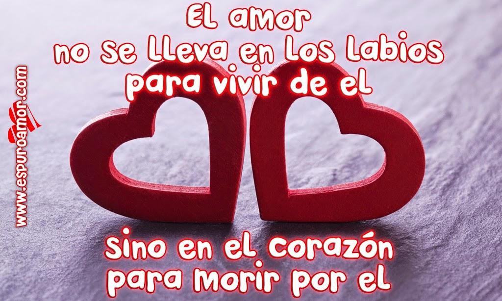 Frases Románticas De Amor De Corazón Para Dedicar: IMÁGENES DE CORAZONES ♥【Dibujos, Fotos, Tarjetas De Amor】