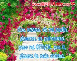 frases de amor con flores y rosas formando un tunel