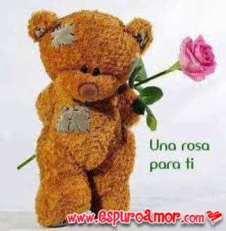 Oso con una rosa para ti muy tierno