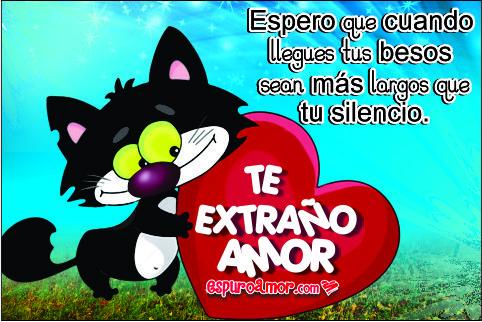 Gatito negro llevando un corazón con te extraño amor