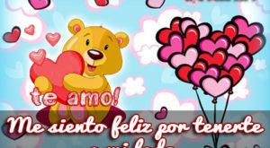 6 Imágenes de Amor de Corazones con la Frase Te Amo