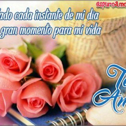 Imágenes de Rosas con Frases de Amor para Dedicar