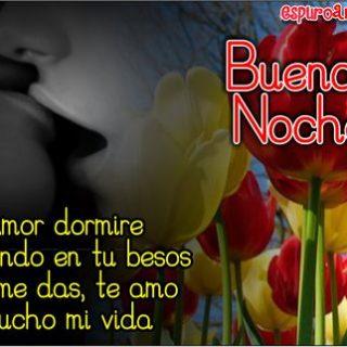 Imágenes de Tulipanes con Hermosas Frases de Buenas Noches