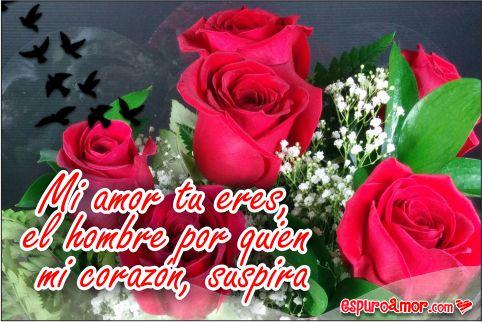 Imágenes de Rosas con Frases para Novio