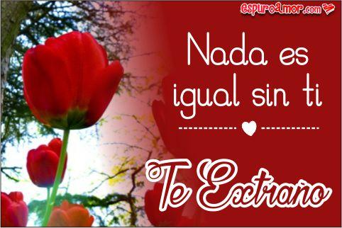 Tulipan rojo con frase te extraño