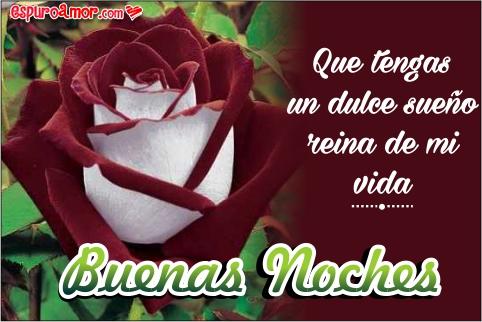 Imágenes de Rosas con Frases para Dar las Buenas Noches