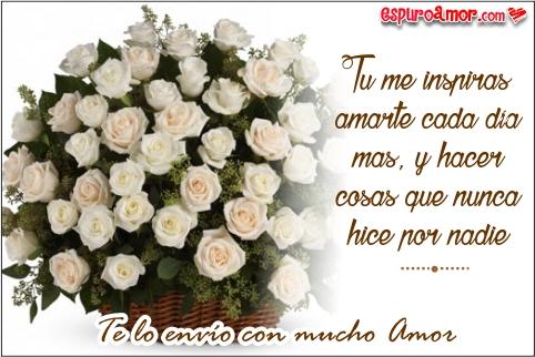 Imagenes De Rosas Con Bonitas Y Hermosas Frases De Amor