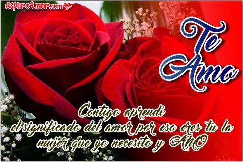 Preciosas rosas con lindas frases
