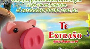 5 Frases de Te Extraño con Tiernos Chanchitos para Dedicar