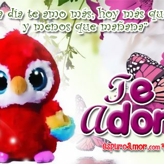 Nuevas Frases de Te Adoro con Peluches de Loritos