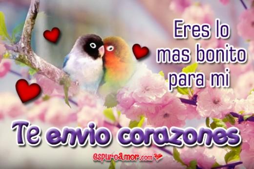 Frases de Te Envío Corazones con Hermosos Pajaritos Gratis