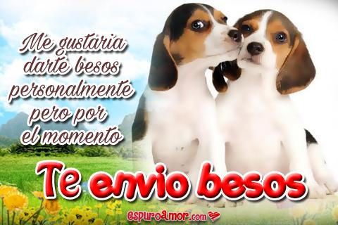 Frases con perritos enviando besos