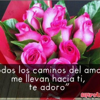 Frases Cortas de Amor con Lindas Rosas para Dedicar