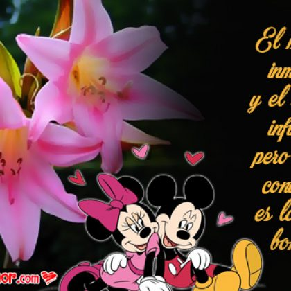 Frases de Amor con Imágenes de Flores Azucena para Novia