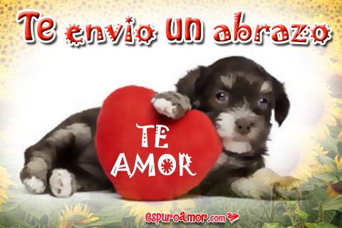 Perrito con corazón rojo de te amo