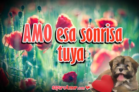 bonito cartel con flores y perrito tierno
