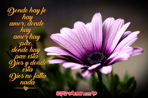 linda flor con texto romántico