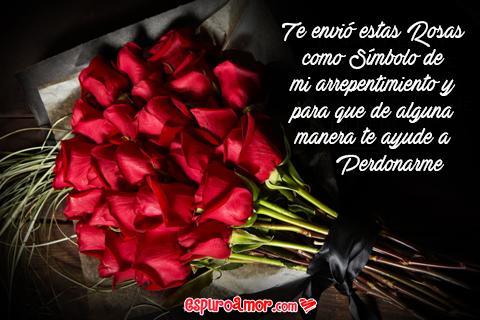 Hermosas Rosas para pedir perdón
